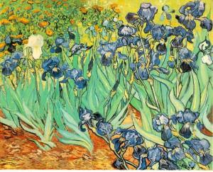 Vincent Van Gogh-Irises-1889