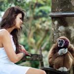 femme-singe-mignon-fleur-cadeau