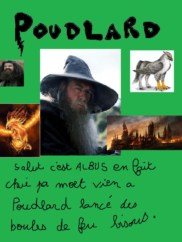 Test : Poudlard - dans quelle maison le Choixpeau magique t'enverra-t-il ?