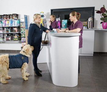 Les règles de base de l'aménagement d'une clinique vétérinaire