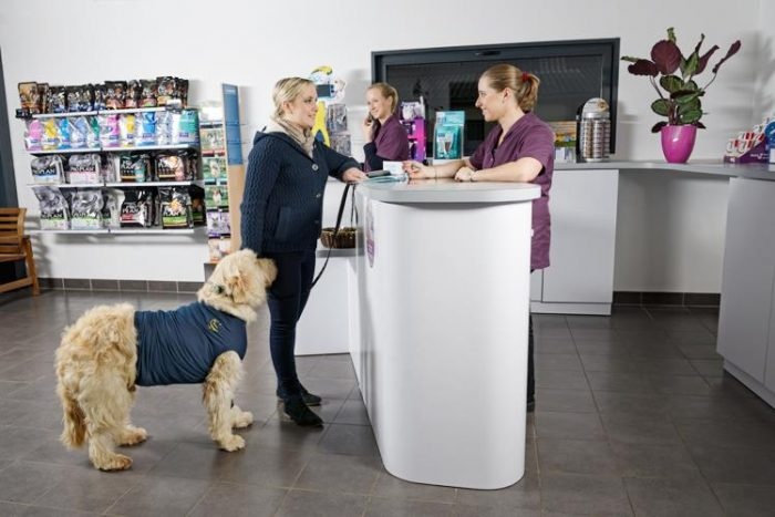 amenagement clinique veterinaire